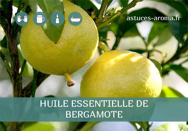 Fiche huile essentielle de Bergamote, son chémotype, ses conditions d'utilisation