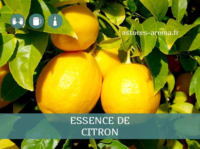 Fiche essence de Citron , son chémotype, ses conditions d'utilisation