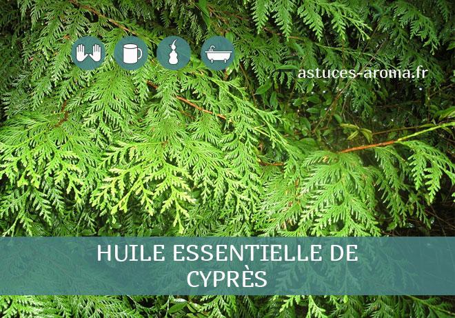 Fiche huile essentielle de Cyprès, son chémotype, ses conditions d'utilisation, astuces